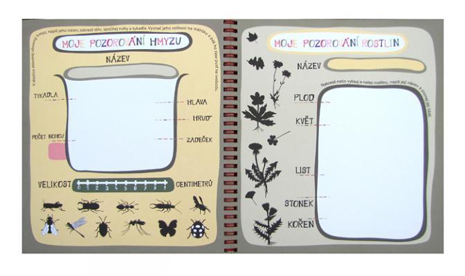 můj prázdninový deník